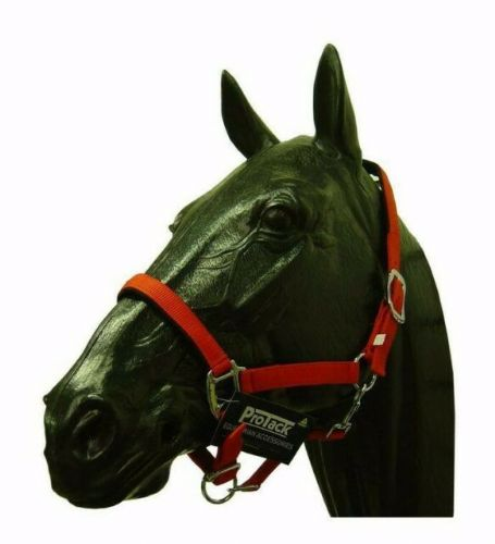 Protack - Adjustable Red Headcollar - Full Size - OFFER